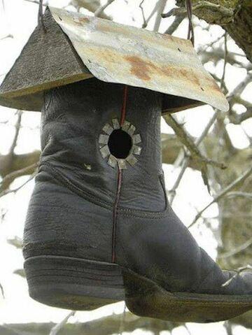 Karmik dla ptaków z buta