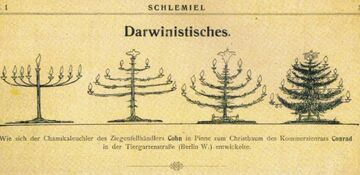 Choinka wg Darwina
