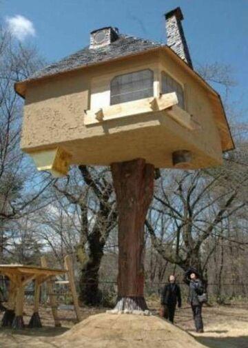 Domek na drzewie, dosłownie