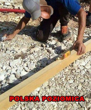 Polska poziomica
