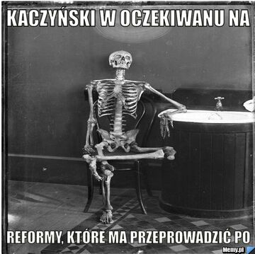 Reformy PO