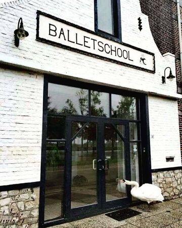 Szkoła baletu
