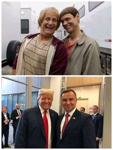 Głupi i głupszy spotkanie po latach