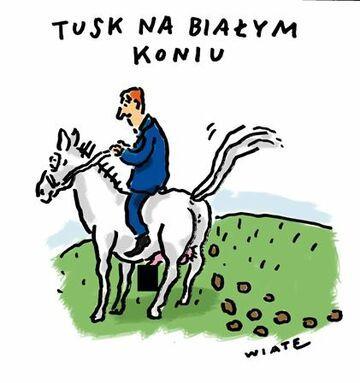 Tusk na białym koniu