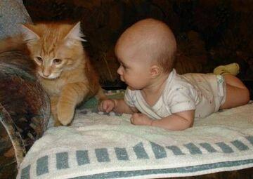 Kotek i dzieciak