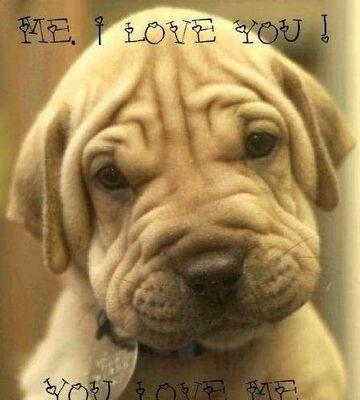 ME I LOVE YOU!