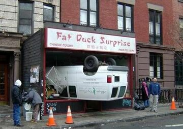 Duck Suprise