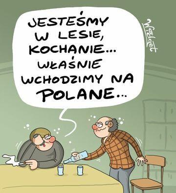 Polane...