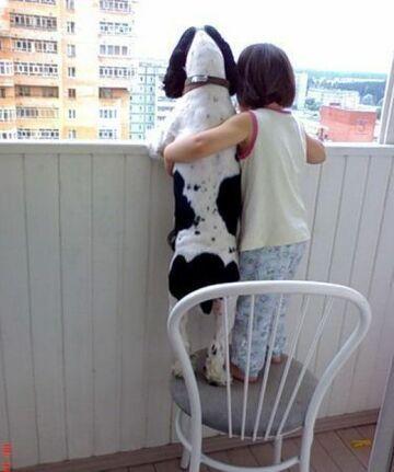 pies z dzieckiem wyglądają przez balkon