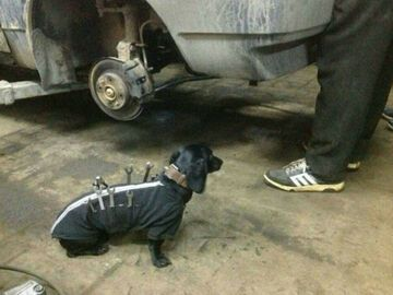 Asysten mechanika