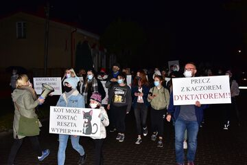 Strajk kobiet - hasła - kot może zostać!