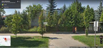 Zrzut z Street View. Kim jest zielony jegomość przed willą wodza?