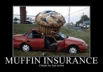 Muffin Insurance