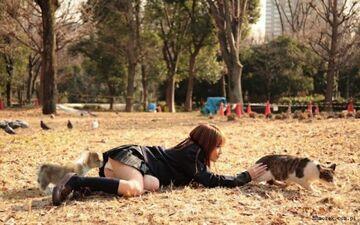 Zabawa w parku