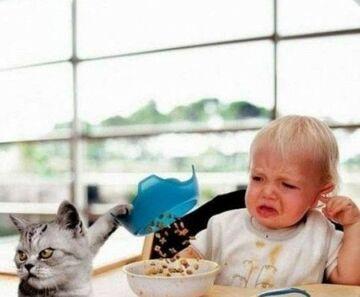 Dlaczego dzieci nie chcą jeść