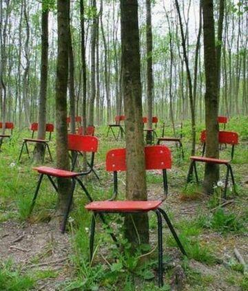 Krzesła w lesie