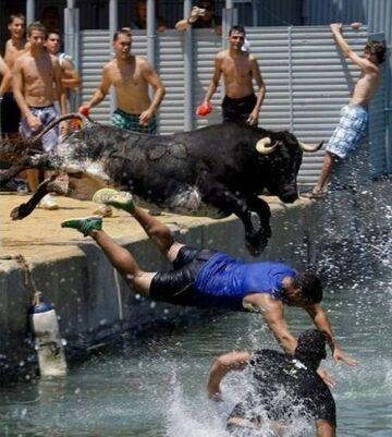 Ucieczka przed bykiem