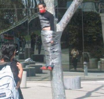 Przyklejony do drzewa taśmą