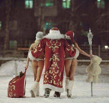 Santa's Chicks