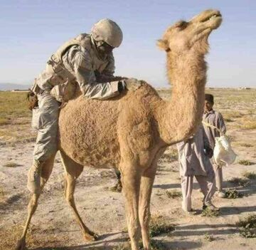Tymczasem: Żołnierz w Iraku