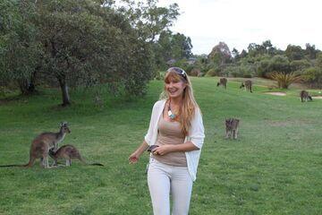 Kangury na drugim planie