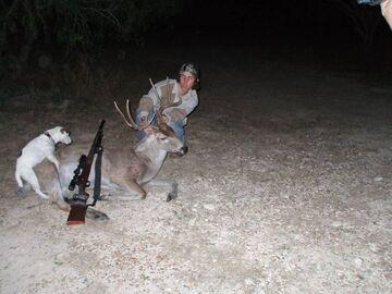 Tymczasem na polowaniu