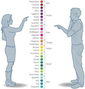 Jak widzą kolory kobiety, a jak mężczyźni?