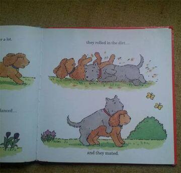 Tymczasem w książce o psach...