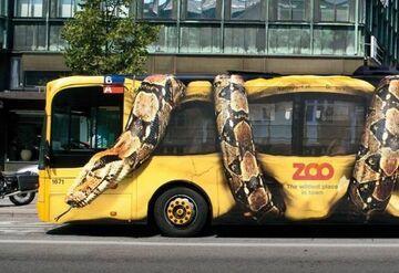 Reklama na autobusie - Zoo