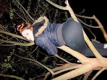 Dupa na drzewie