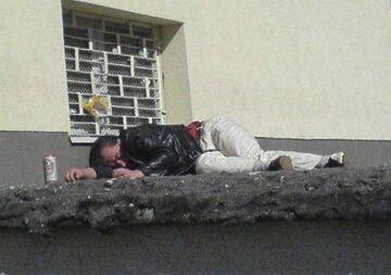 śpioch na dachu