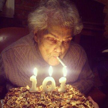 101 urodziny babci