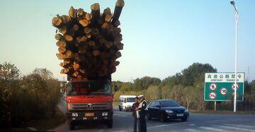 Przewóz drewna w Chinach