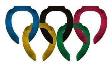 Mem Igrzysk Olimpijskich, deski klozetowe w Soczi