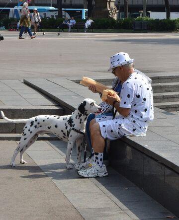 Jaki właściciel, taki pies!
