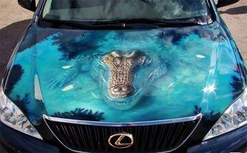 Aligator wyłania się spod maski samochodu