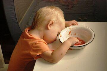 Drzemka po pysznym obiedzie