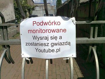 Podwórko monitorowane
