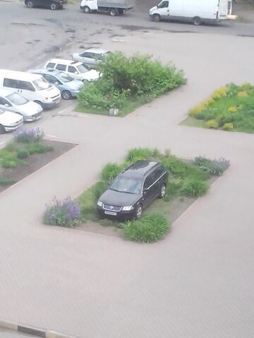 Szeryf parkowania