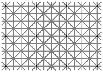 Ile czarnych kropek widzisz?