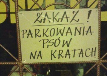 Zakaz parkowania psów na kratach