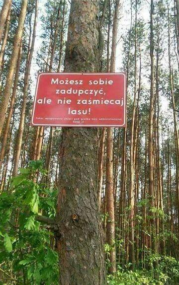 Możesz sobie za...., ale nie zaśmiecaj lasu!