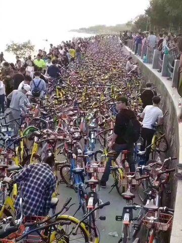 Gdzieś tam jest mój rower