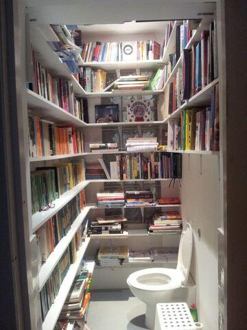 Taka tam, biblioteczka w toalecie
