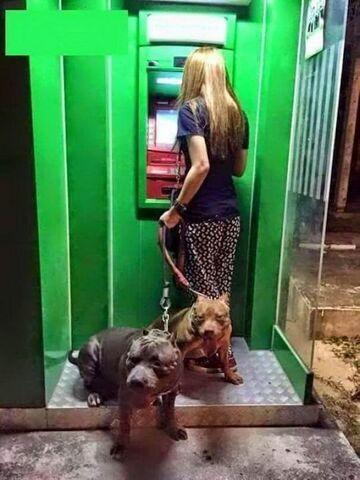 Nawet o niej nie myśl... Dziewczyna przy bankomacie z ochroną