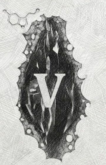 Mroczny kamień (V)