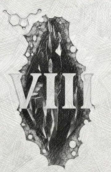 Mroczny kamień (VIII)