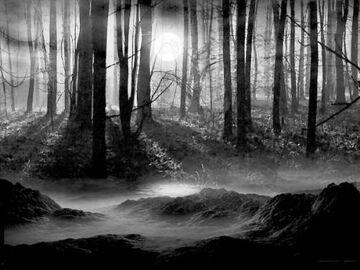 Tajemnica Mrocznego Lasu cz 1