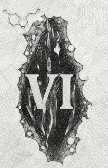 Mroczny kamień (VI)