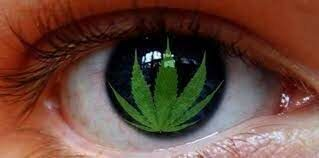 Babole – Pieśń o oczach zielonych